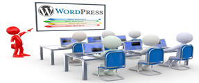 Web Design Education And Training at WordPress Course